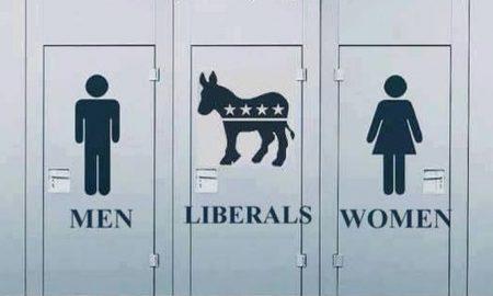 men-democrats-women