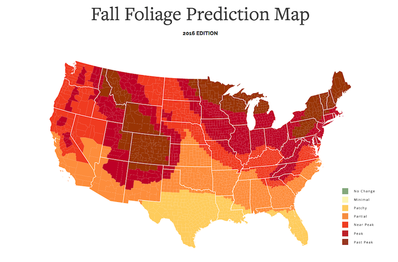 Interactive Map: The Best Places To View The Fall Colors and Foliage Change