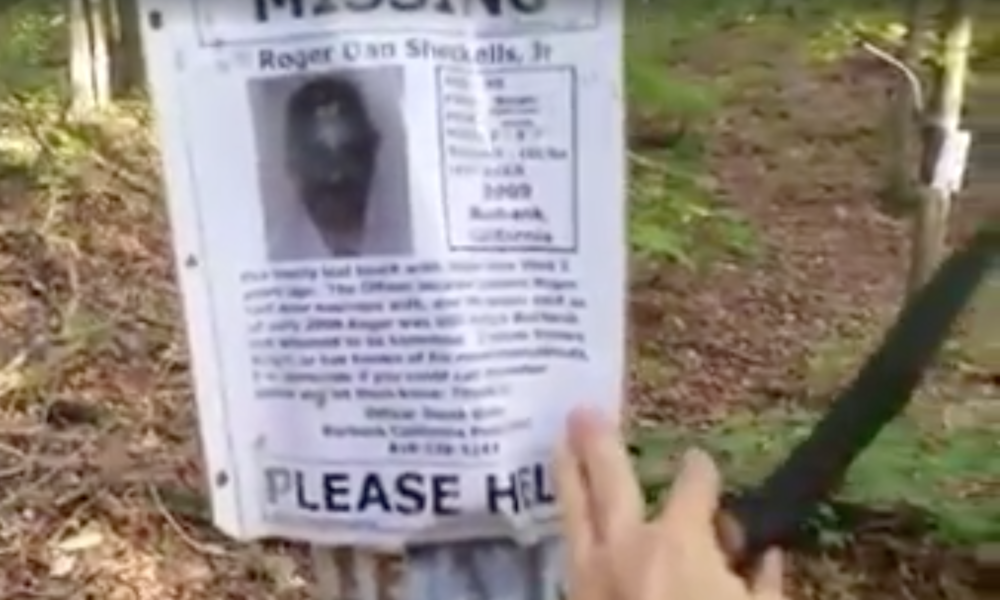 Man On Uneventful Hike Finds Creepy Missing Persons Shrine In Middle Of Forest