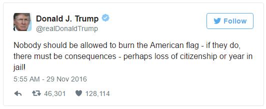 trump-flag-burning