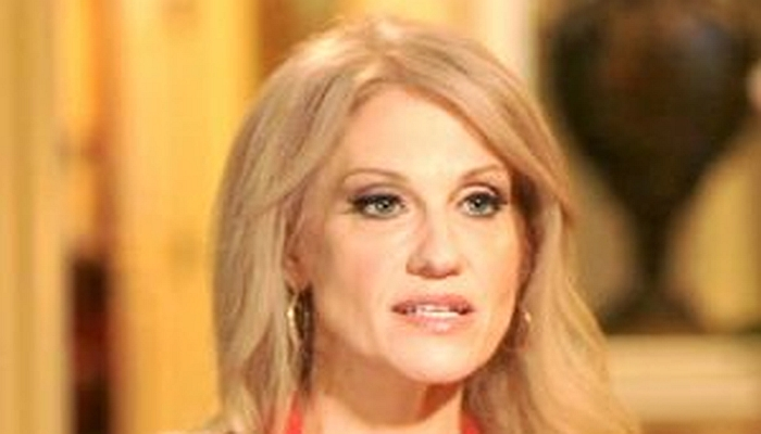 """""""WHAT A PACK OF LOSERS"""": Kellyanne Conway Blasts Clinton Campaign For Joining Recount"""