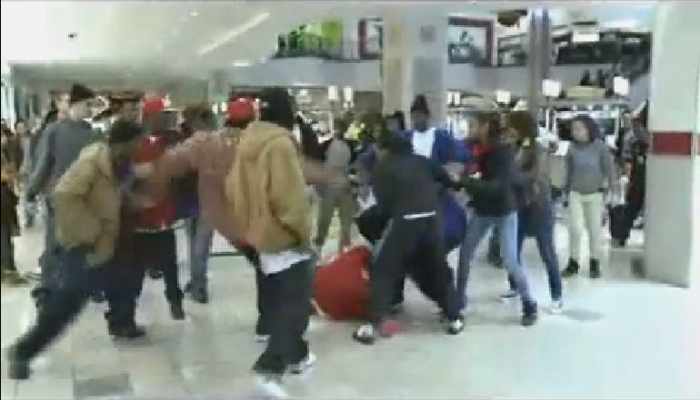 MASSIVE Post-Christmas Violence at U.S. Malls Epitomizes Current State of America [VIDEO]