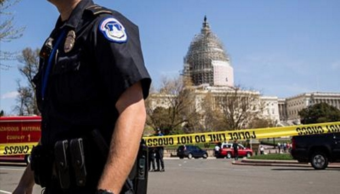DC Police Demand Removal of Capitol Painting Depicting Cops As Racist Pigs