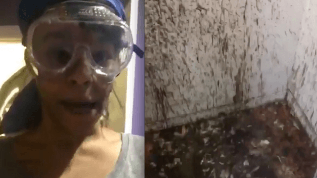 [WATCH] Female Rapper posts video of herself cleaning the closet where she's sacrificed chickens for years.