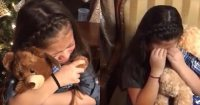 Grandfather Passes Away, But Voice Lives On Forever In Teddy Bear Gifts For His Granddaughters