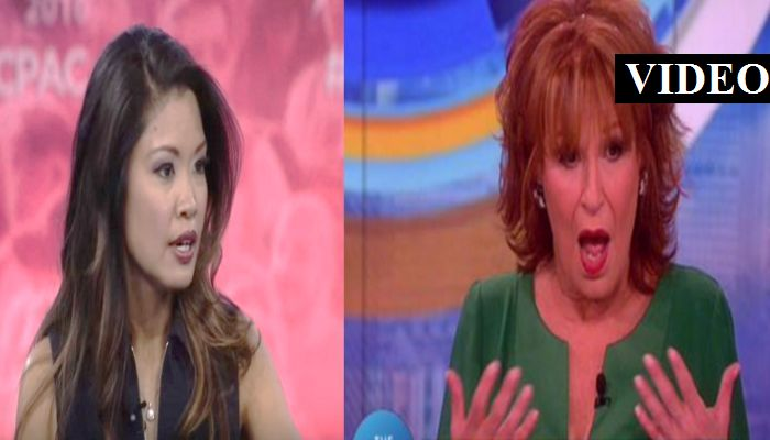 "Michelle Malkin SCHOOLED Liberal Idiots On ""The View"" On Obama's Lies [VIDEO]"