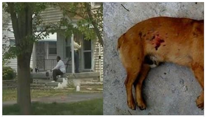 Two Teen Thugs Burglarize Kentucky Home, Killing The Family's Dog, Then Get Unpleasant Surprise