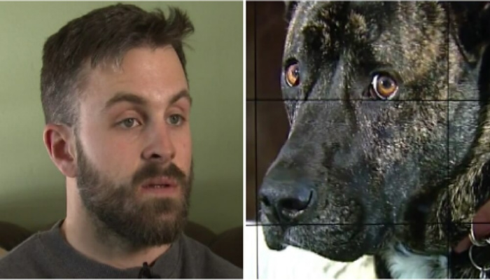 Man Enraged by What Daycare Left on Dog. Shows Worker, Shocked By What She Utters Next [PHOTOS]