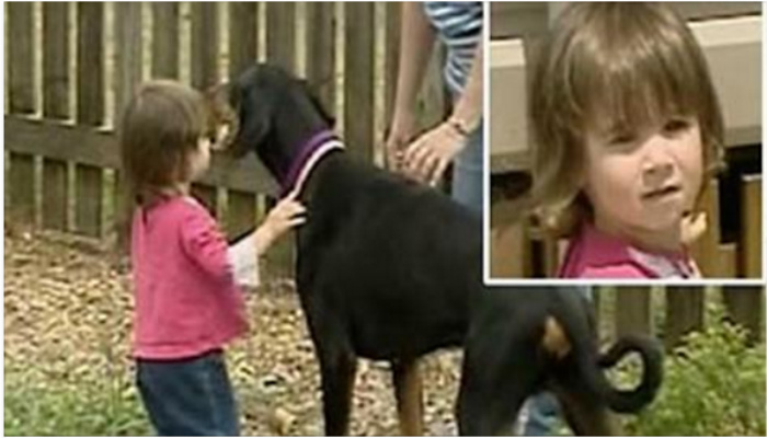 People Watch In Shock As Dog Grabs Girl And Throws Her, But Then Realize What Happened