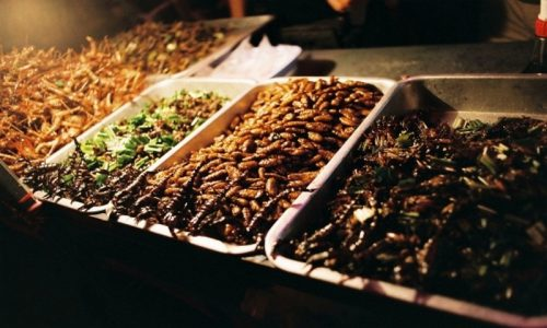 Fried insect snacks - photo credit - Flickr