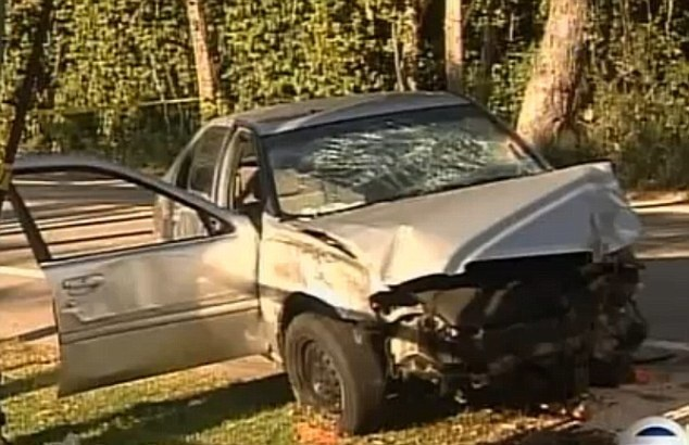 Drunk Driver Kills Woman Jogging With Her Dog, The Dog Flees. What Happened Next Is Inconceivable! [VIDEO]