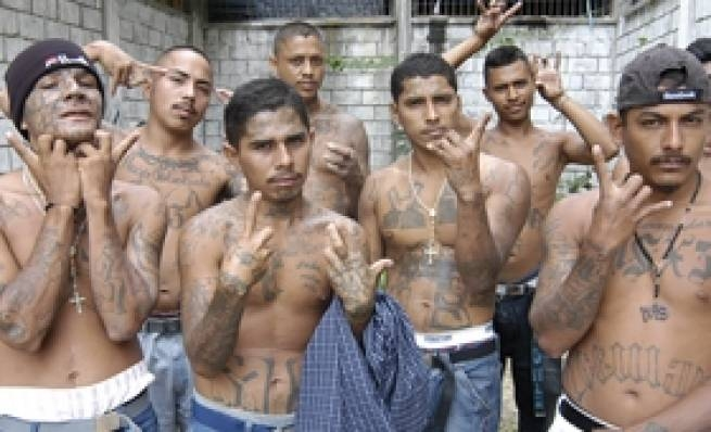 Whistleblower:  Obama Knowingly Allowed 16 MS-13 Members Into the Country [VIDEO]