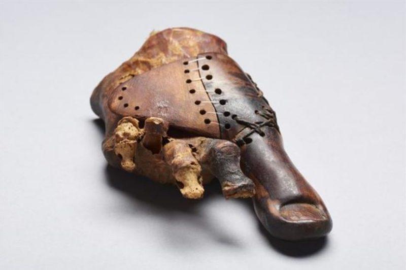 3,000-year-old prosthetic toe.