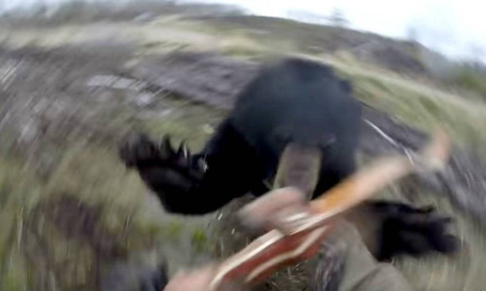 Hunter Captures His Bear Attack With Helmet Mounted Camera [WATCH]