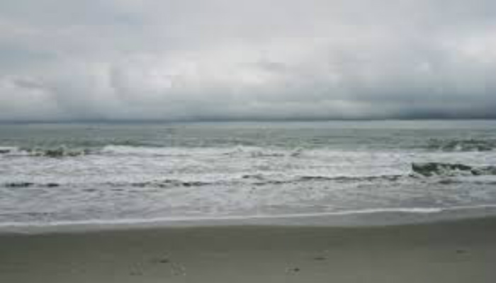 Man Walking Along The Beach Spots Something No One Can Explain. What Is This? [PHOTO]
