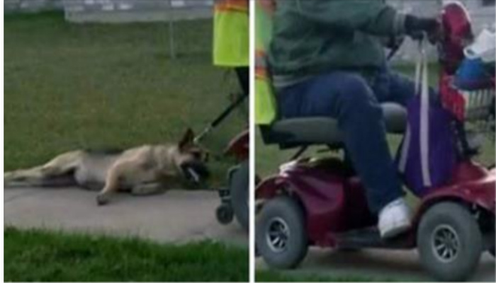 Neighbor Records Cruel Old Man Drag Dog Behind Scooter, Then She Calls The Cops [VIDEO]