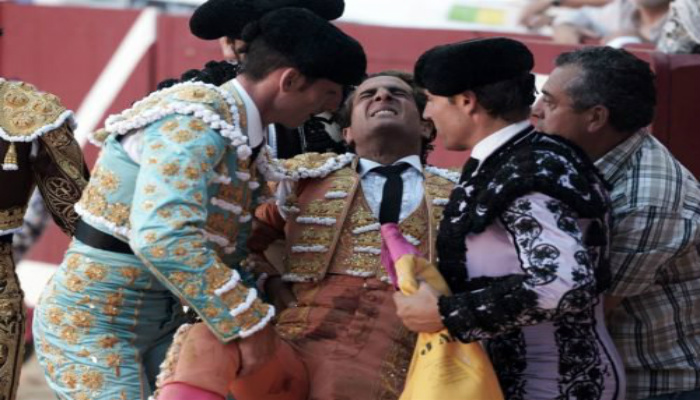 Award-winning Matador Brutally Gored To Death By Bull In Arena [GRAPHIC PHOTOS]