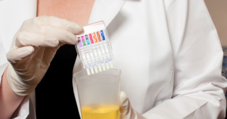 Would You Support A Law Requiring All Welfare Recipients To Pass A Drug Test First?