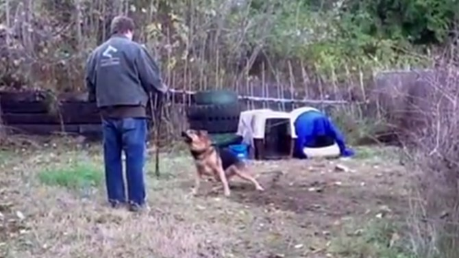 Man Stunned By What Happens After Unchaining Aggressive Dog [VIDEO]
