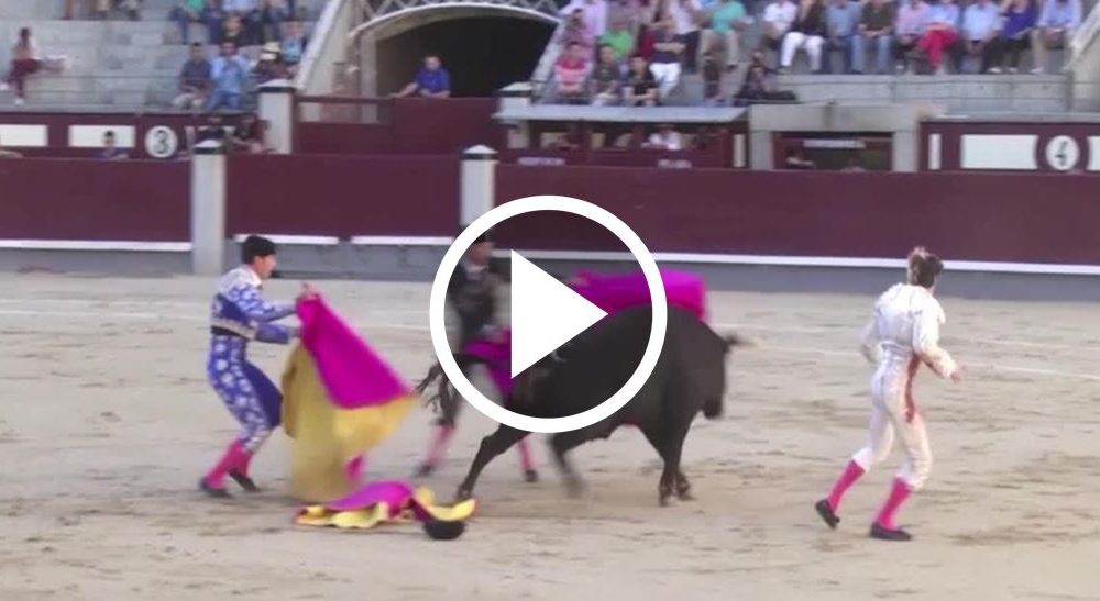 Raging Bull Gores A Bullfighter In The Groin And Seriously Injures Another [WATCH]