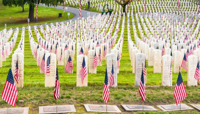 Bringing A Flag To Arlington Cemetery Can Get You One Year In JAIL
