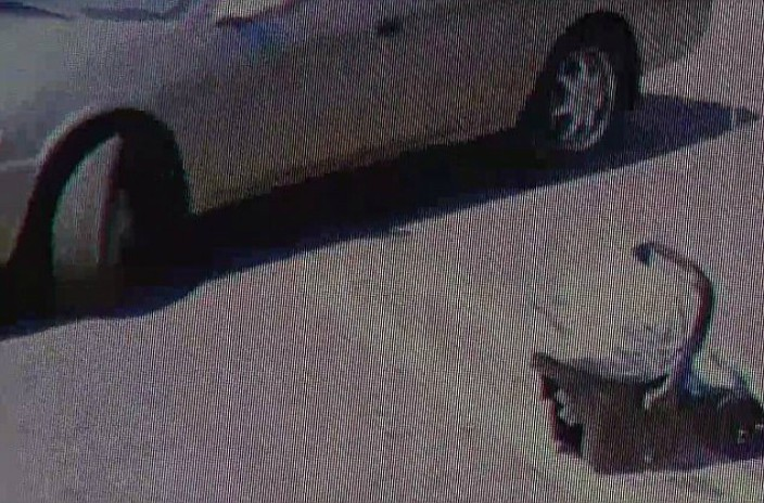 Watch as Father Abandons Two Week Old Baby in Parking Lot [VIDEO]