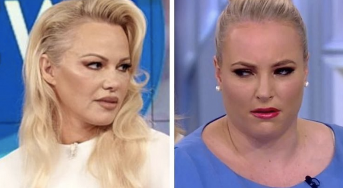 Here Is Pamela Anderson's EPIC TAKEDOWN of the Lunatic Leftists on The View