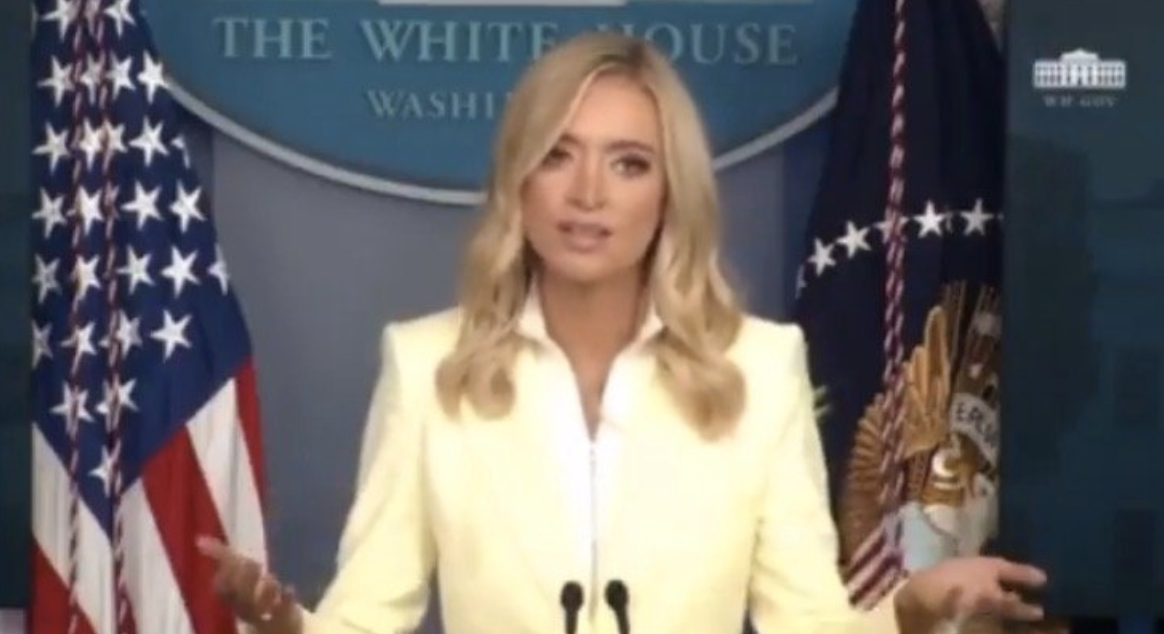 Kayleigh McEnany Blows Up ObamaGate, Calls Out Media For Ignoring Flynn Unmasking [WATCH]