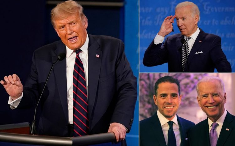 Here's How The 2020 Election Was Stolen From President Donald Trump (Video)