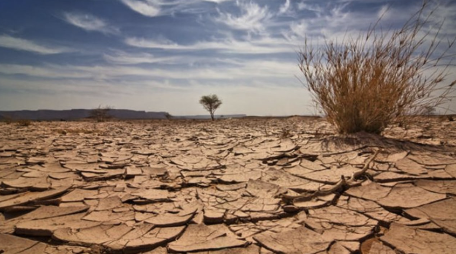 The Countdown To Mass Famine Begun & This Is Not A Drill [WATCH]