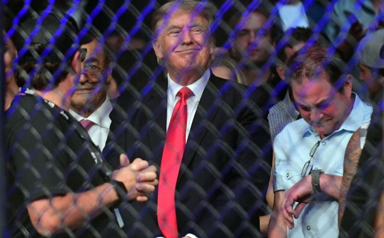 UFC Crowd ERUPTS When Donald Trump Enters To Sit Cage-Side! (Video)