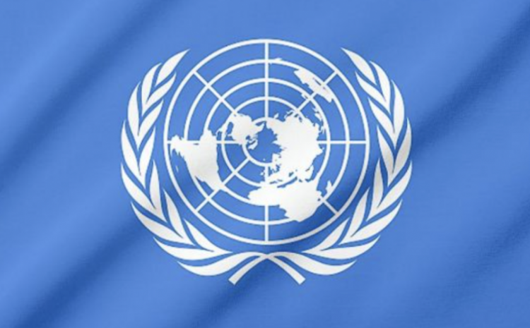 What Are UN Soldiers Doing On American Soil?